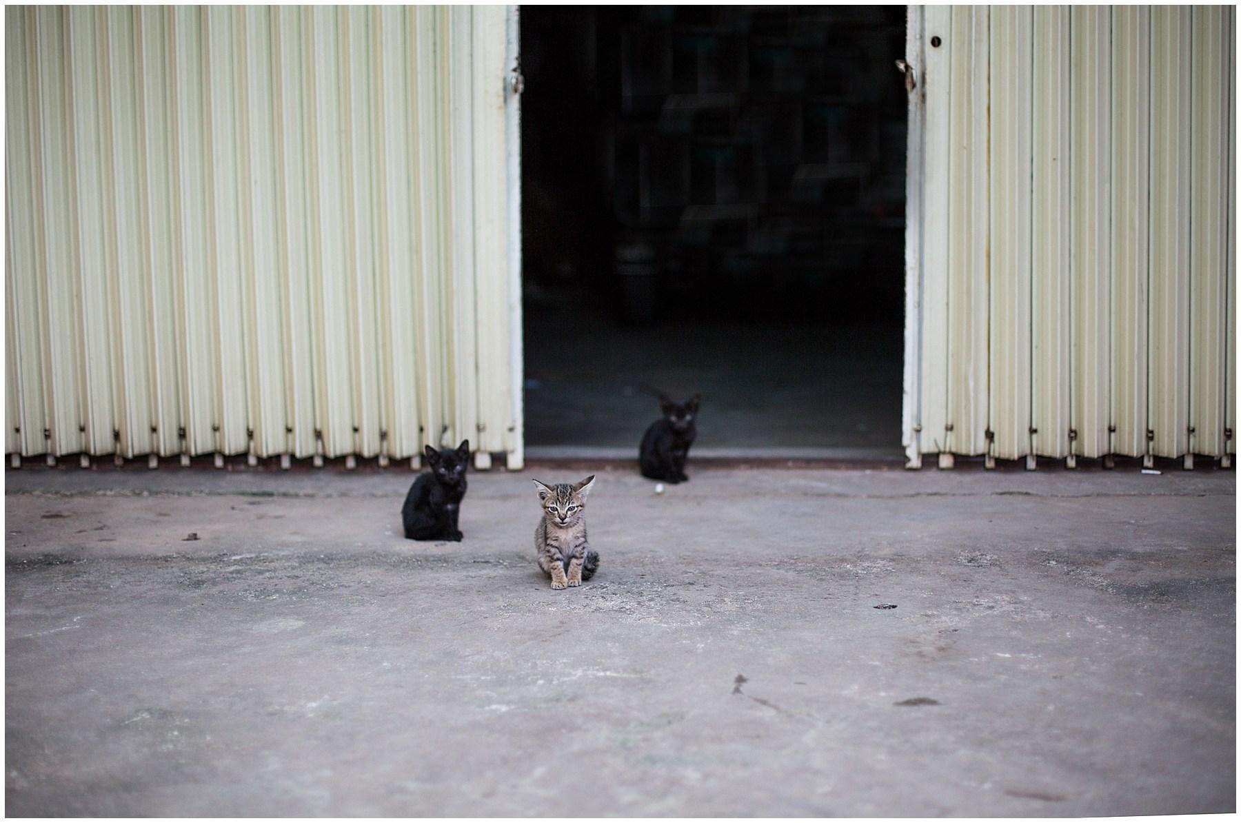 Cambodia_0049.jpg
